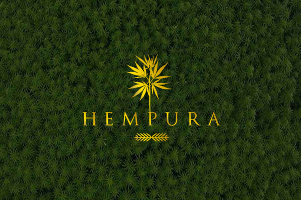 hempura cbd logo with hemp fields background